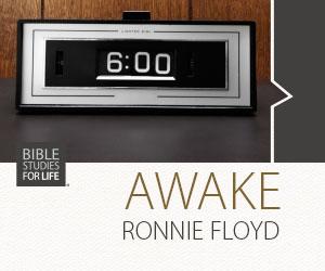 BSFL_AWAKE_web_ad